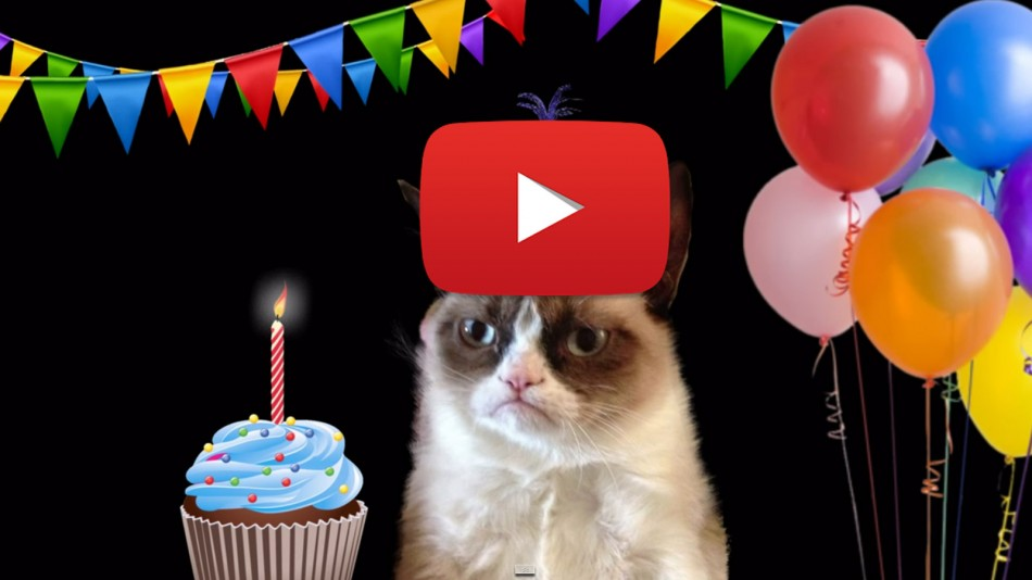 Kitty Cat Birthday Meme