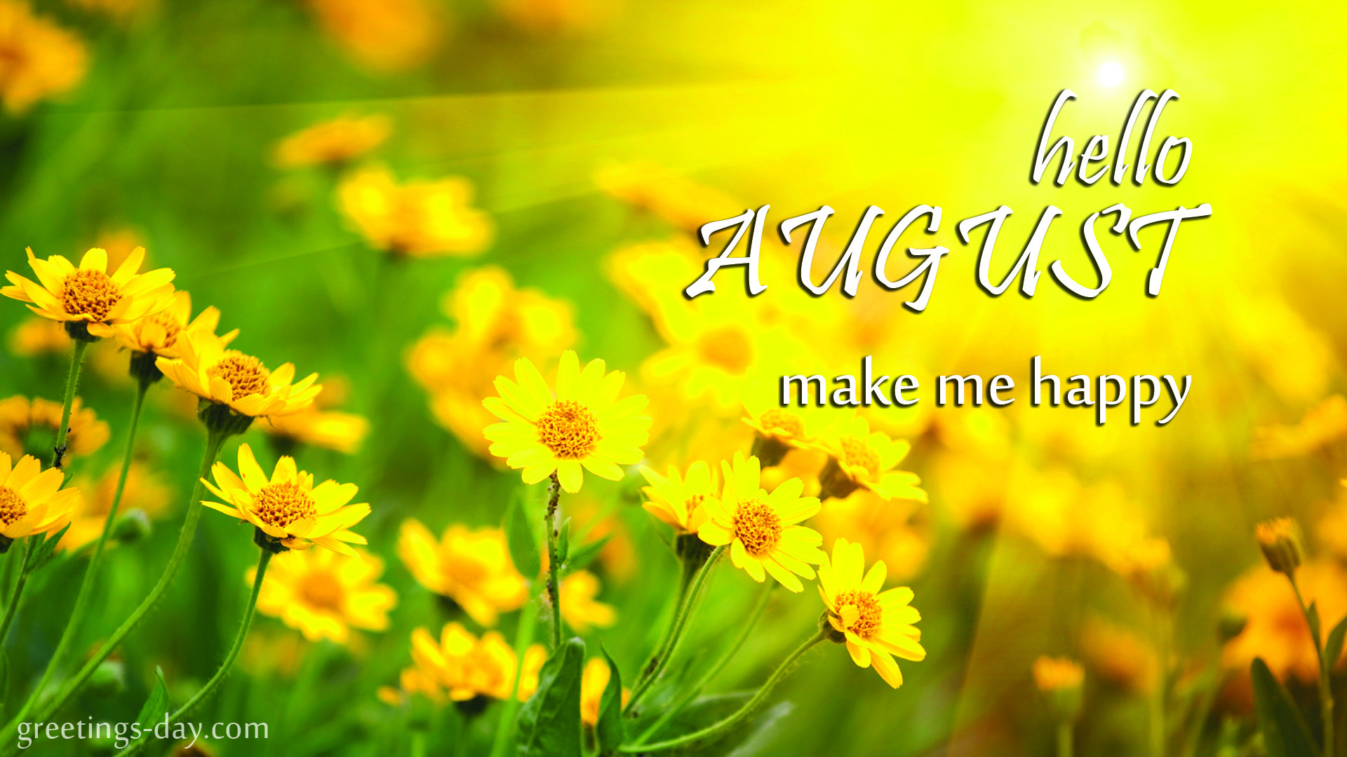 Hello August! Make me Happy