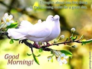 good mornind my love