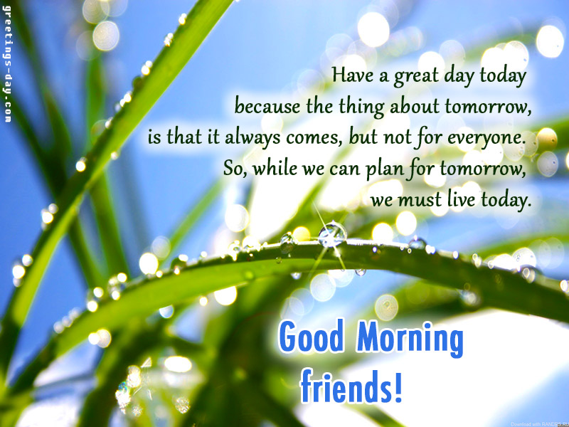 Good Morning Friends – Free Ecards, Pictures & Wishes.