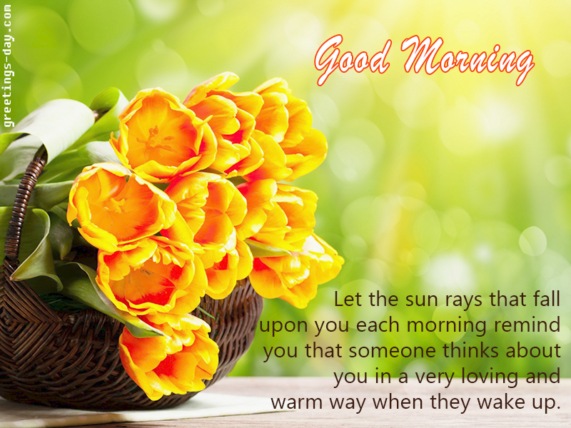 Good morning and happy tuesday pictures photos and images for - Good Morning Cutie Free Ecards Congratulations To Morning