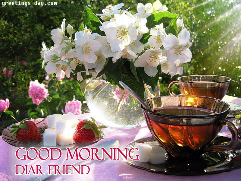 friend good morning
