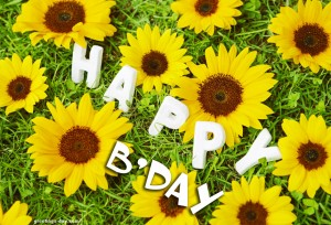 Happy BDay sun flower