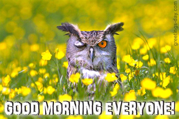 Good Morning Everyone Miss Caroline : Good daily positive morning quotes pics