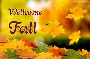 wellcome fall