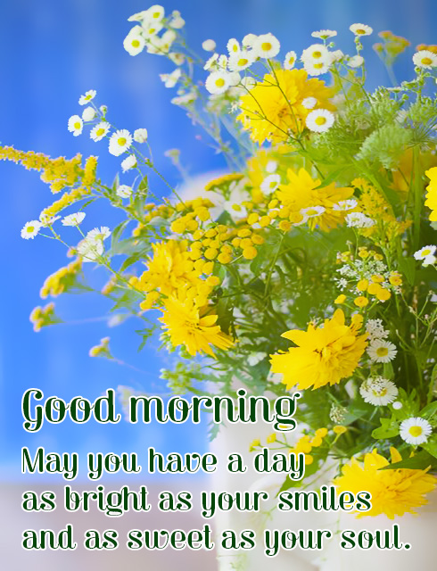 Greeting cards for every day good morning wishes ecards animated good morning flowers m4hsunfo