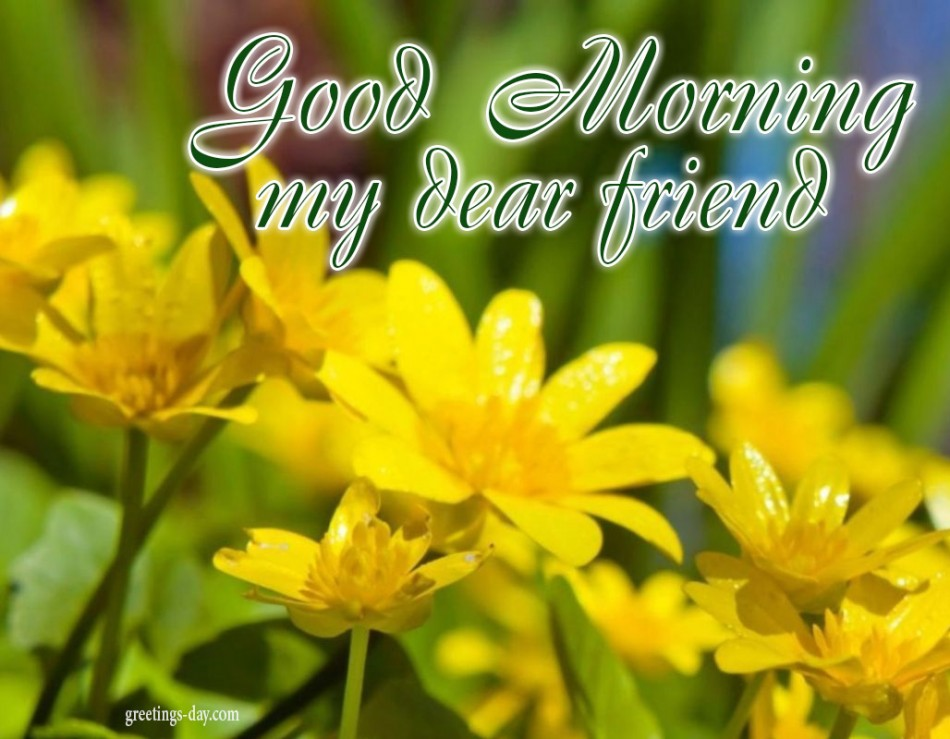 Good Morning - Daily Pictures, Animated Pics & Wishes.