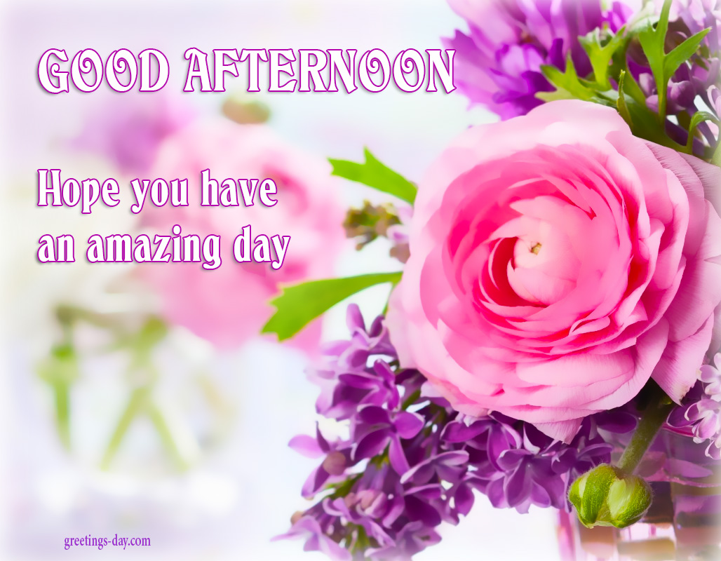 Greeting cards for every day good afternoon online pics photos good afternoon online pics photos greetings m4hsunfo