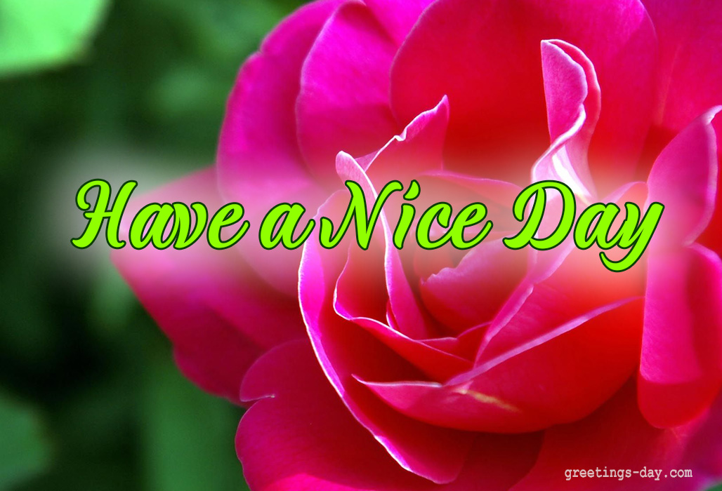 Have a Nice Day – Daily Wishes, GIFs, Pictures.