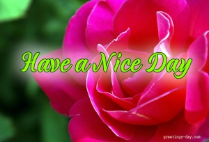 nice day wishes