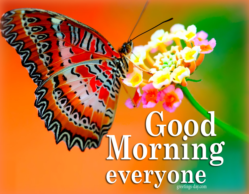 Good Morning  Everyone – Best Cards & Wishes