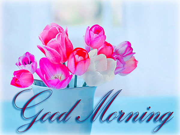 Good Morning – Best Cards, Animated Pics & Messages