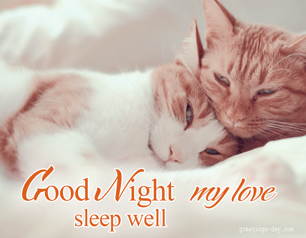 Good Night my LOVE sleep well