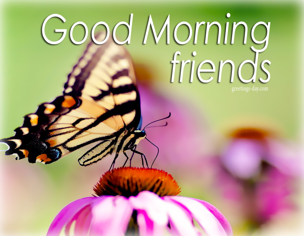 Greeting Cards For Every Day Good Morning Free Images Animated
