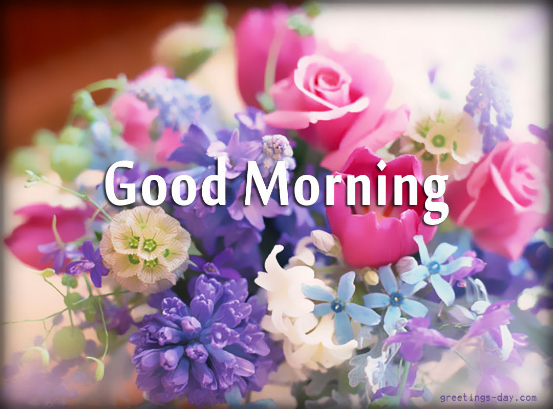 Greeting Cards For Every Day Good Morning Free Images Gifs