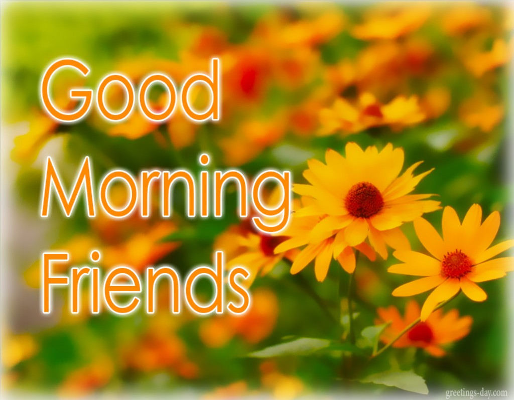 Good Morning Best Ecards Gifs Messages Everyday Greetings