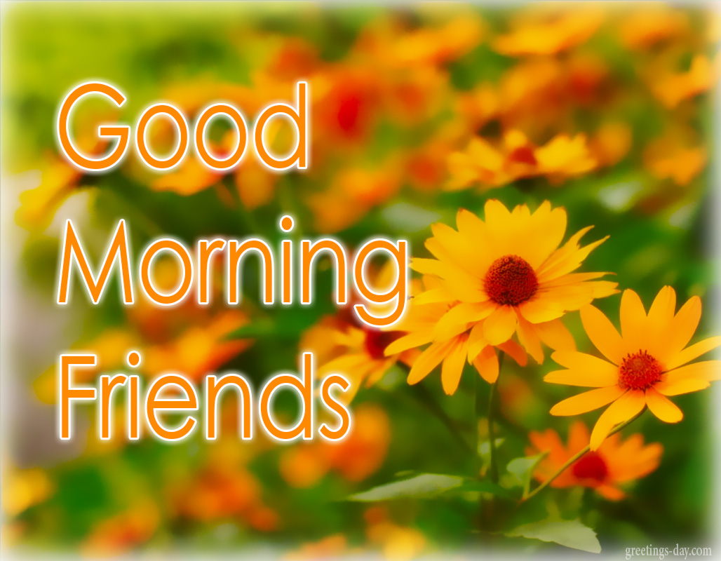 Good morning best ecards gifs messages everyday greetings good morning best ecards gifs messages m4hsunfo