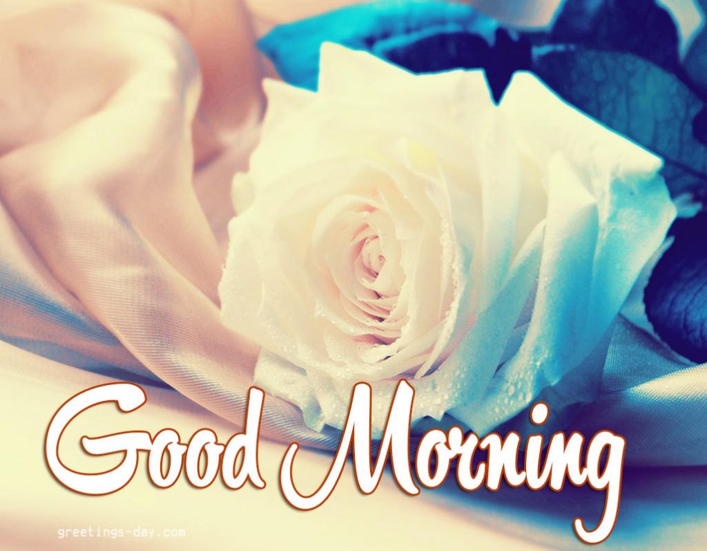 goodmorning for her