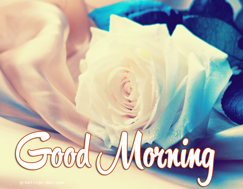 Greeting Cards For Every Day Good Morning Daily Ecards Gifs