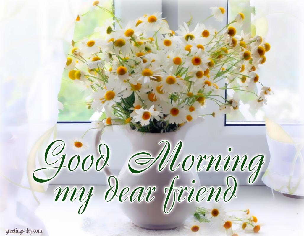Good Morning Friends - Pics, Animated Gifs and Messages.