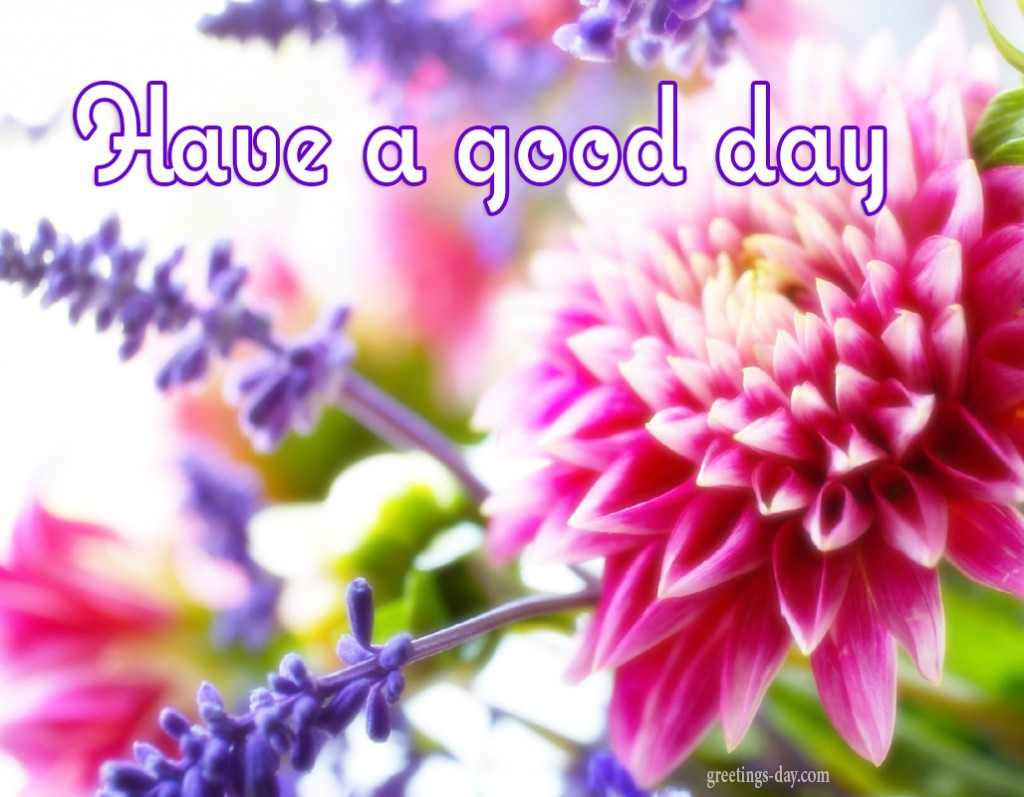 Have A Nice Day Best Animated Gifs Quotes Pics