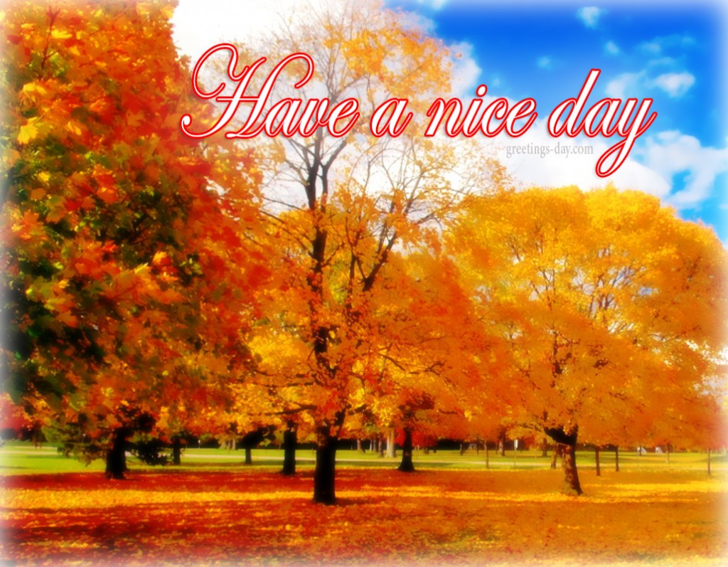 nice day fall