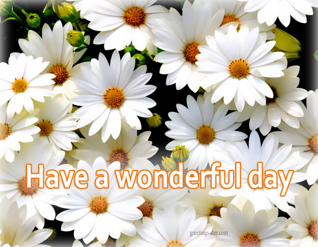 have wonderful day