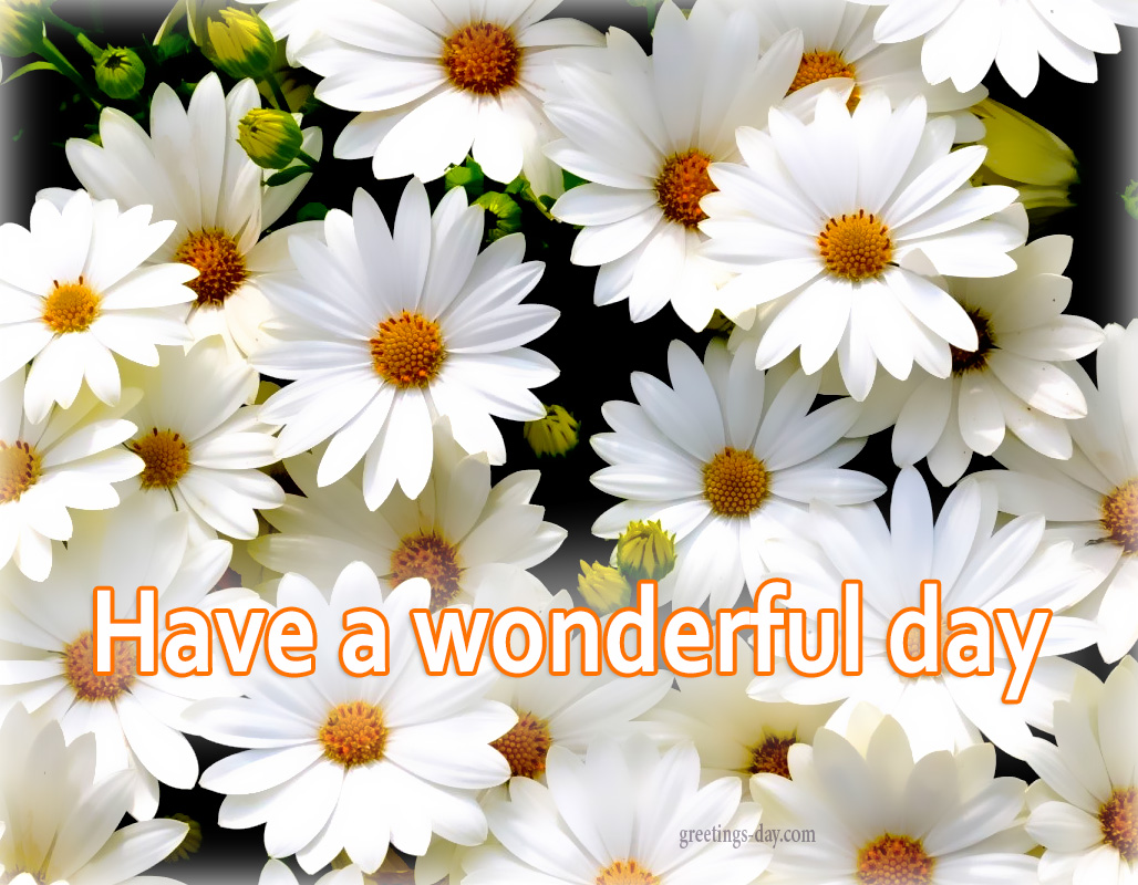 Greeting cards for every day have a nice day best quotes photos have wonderful day m4hsunfo