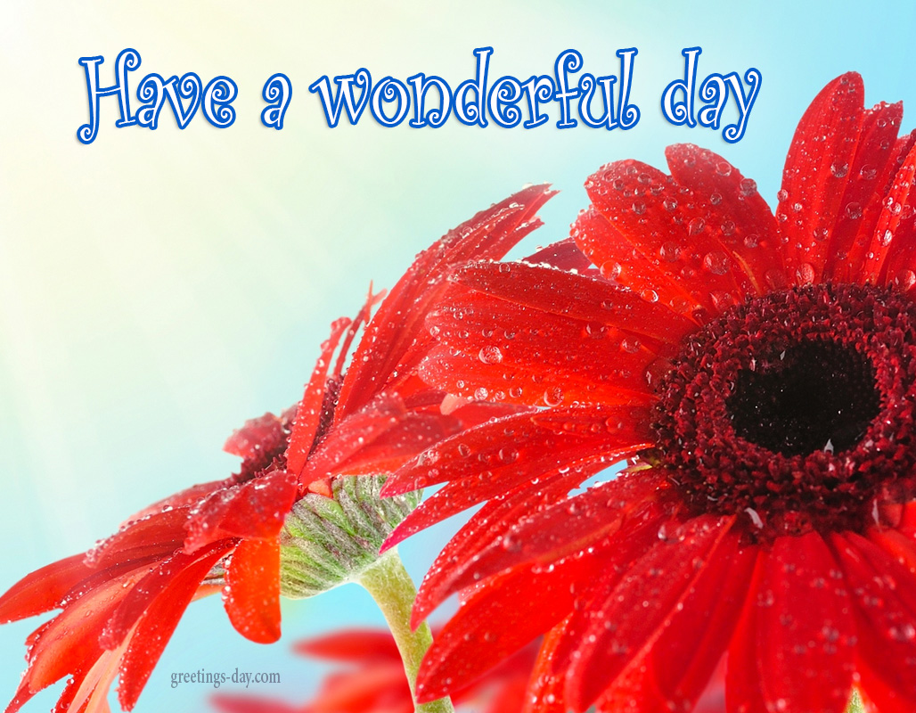 Have a Wonderful Day – Free Quotes, Images, Animated GIFs