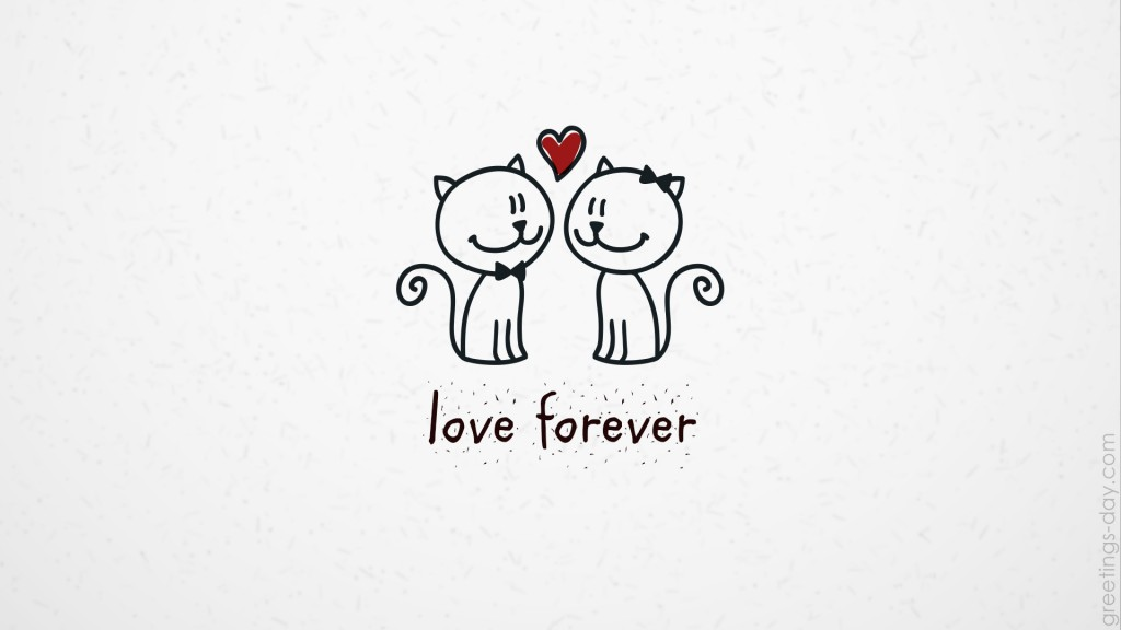 valentines day cats