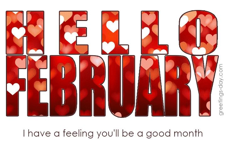 hello february gif