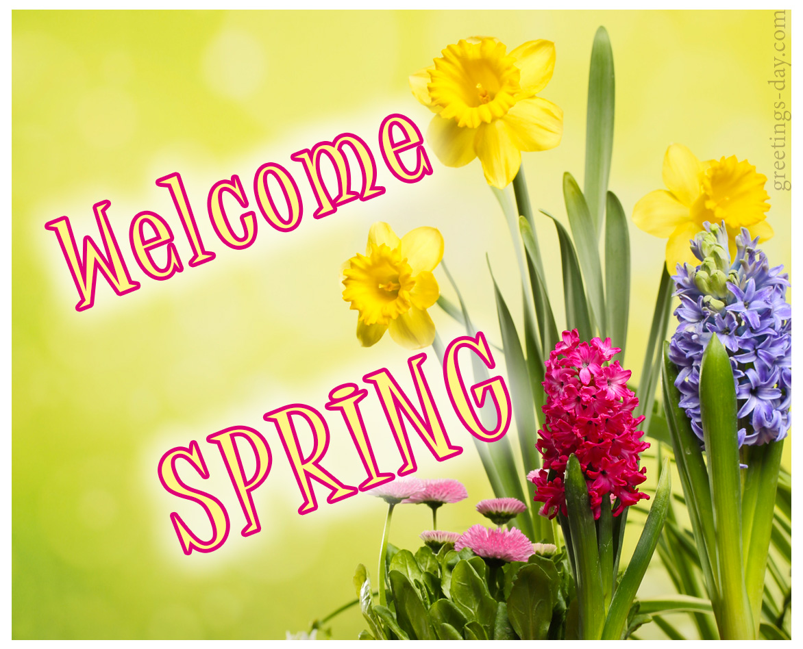 Greeting cards for every day welcome spring 10 amazing pictures welcome spring m4hsunfo