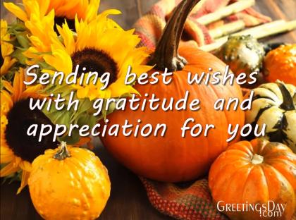 Happy Thanksgiving Video Congratulations