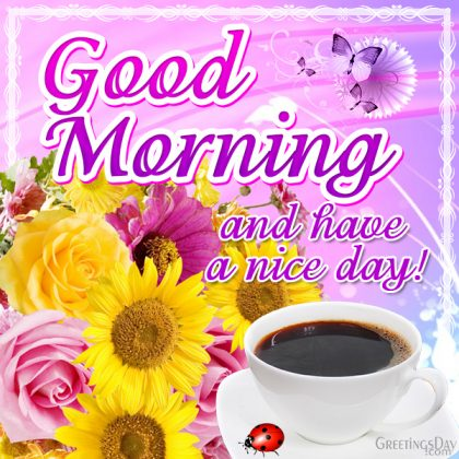 Good Morning and Have nice Day