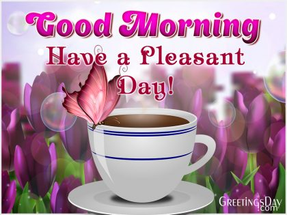 Good morning! Have Pleasant Day!