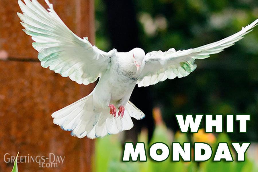 Happy Whit Monday