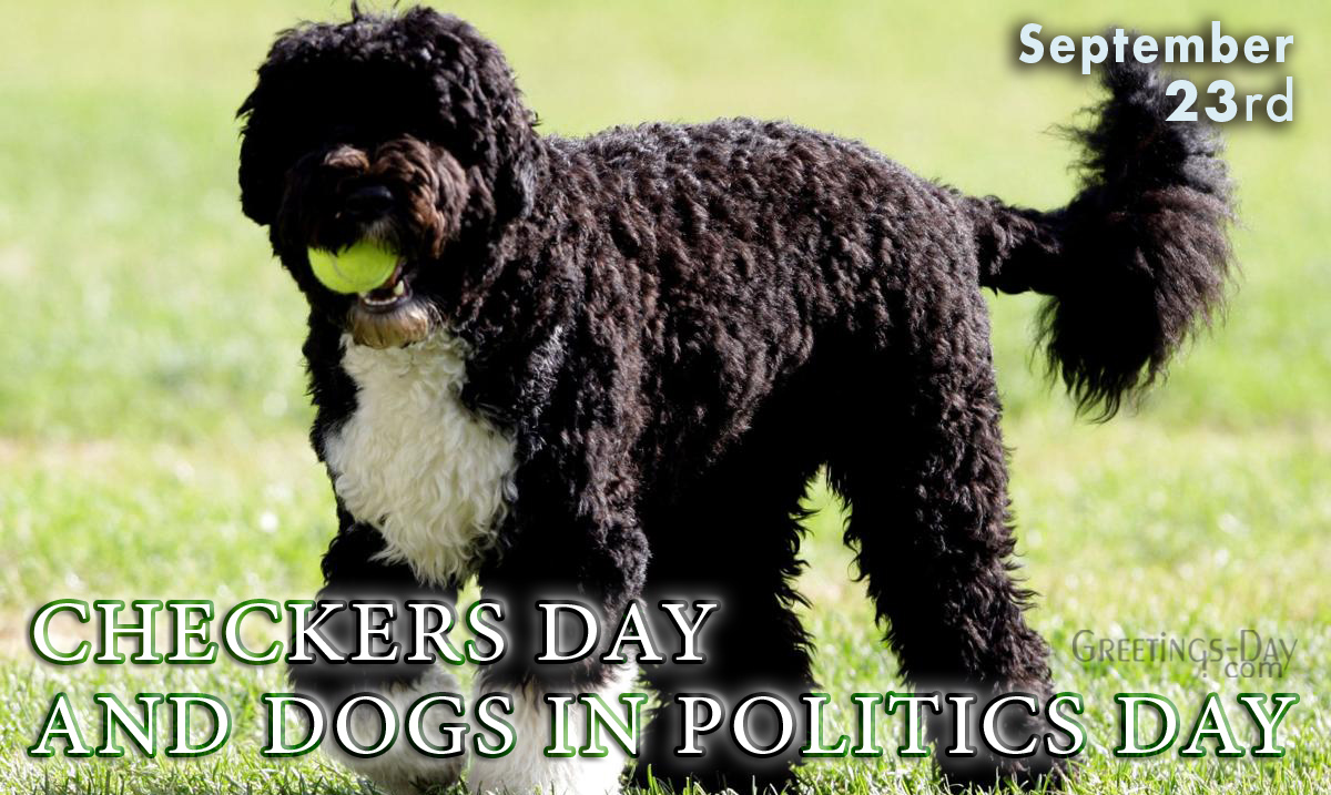 Dogs in Politics
